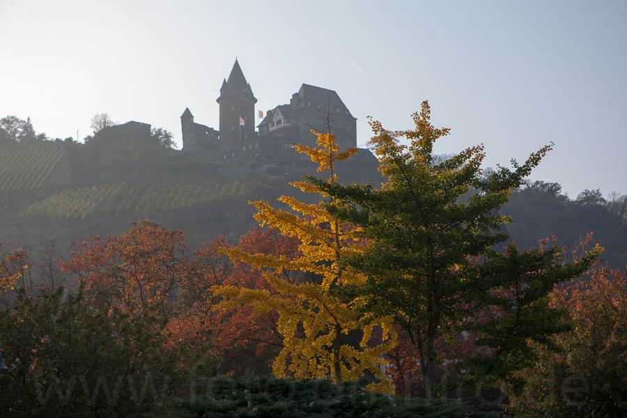 2012-10-24_16-20-06_rheinfahrt__mg_3980-500