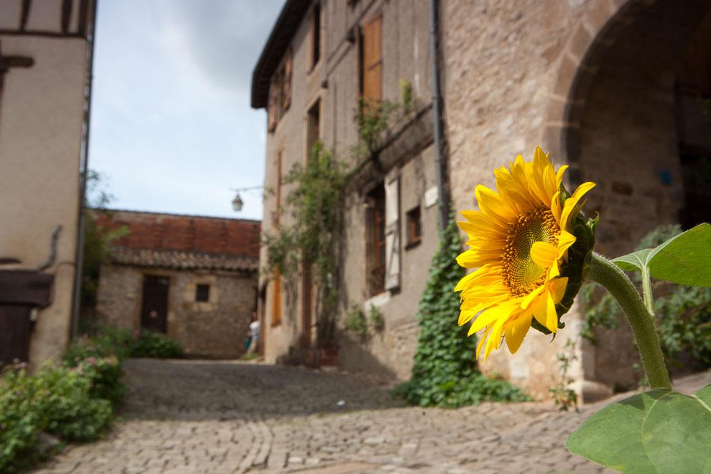 2014-08-02_12-29-48_Frankreich__MG_7355-1600