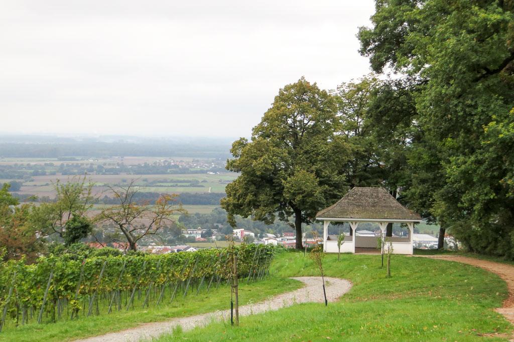 2014-09-14_12-09-30_Fürstenlager_IMG_1348-1600