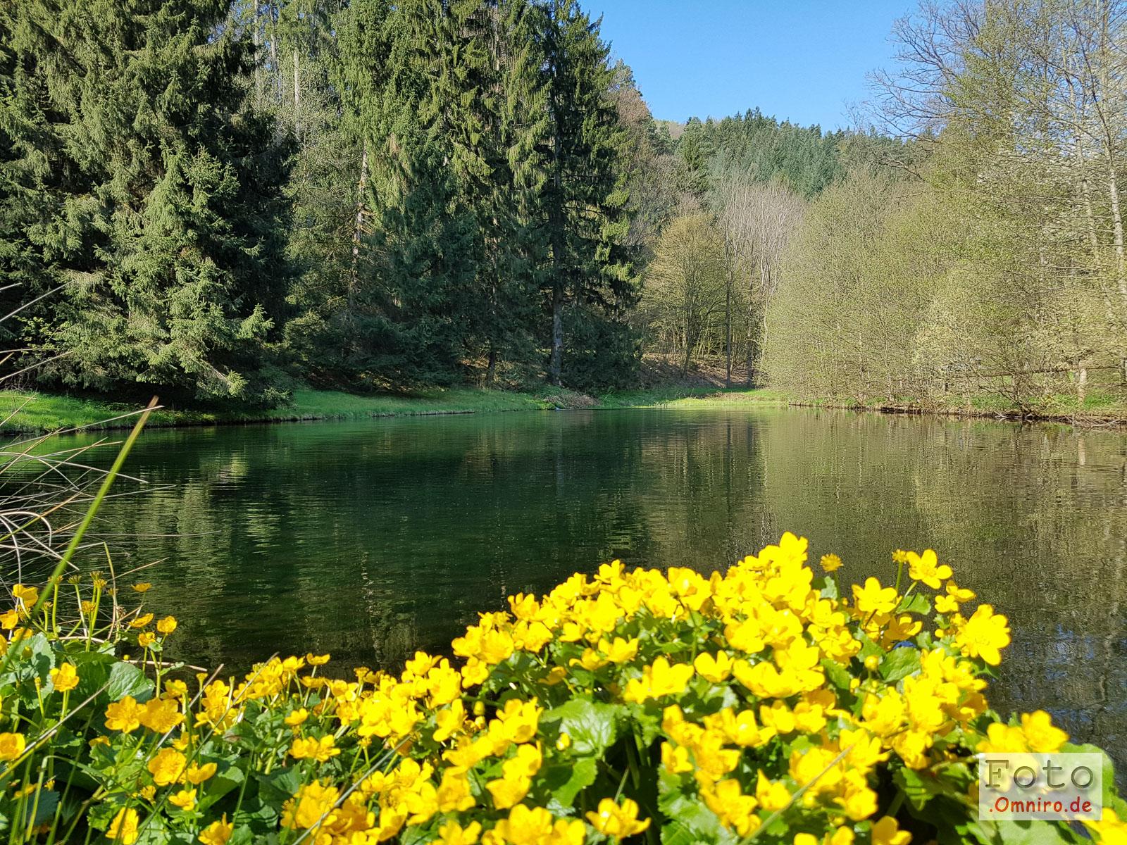 2016-05-02_10-05-17_Pfalz_20160502_100517-1600
