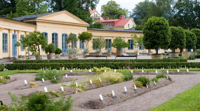 Schweden – Sehenswert: Uppsala Linne Garten