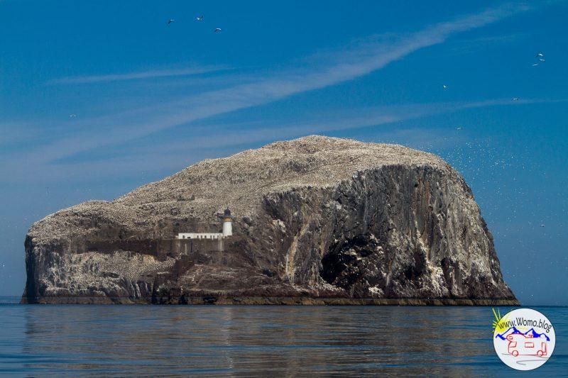 2018-05-19_13-08-26_Schottland Bass Rock_IMG_7353-1600