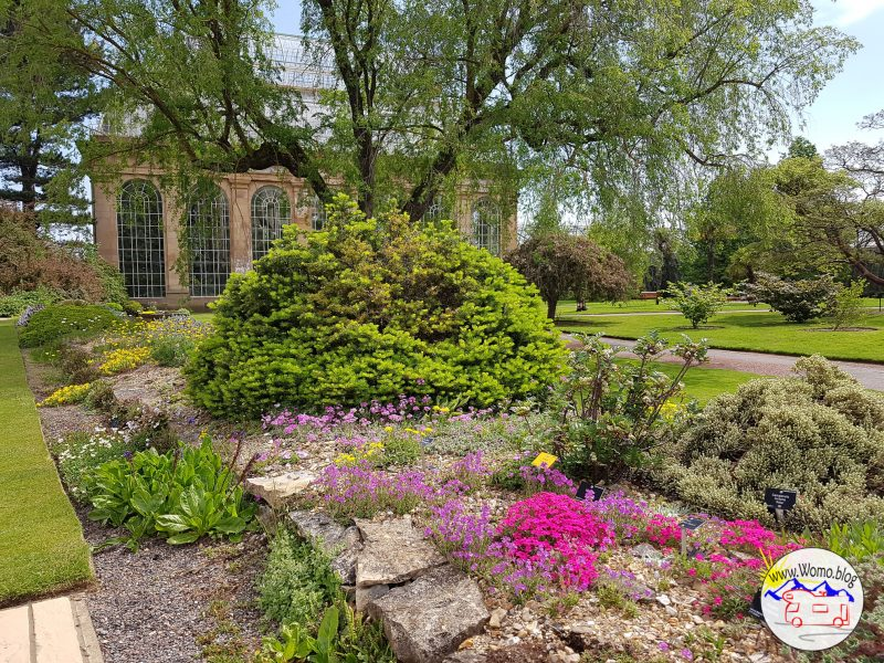 Botanischer Garten Edinburgh