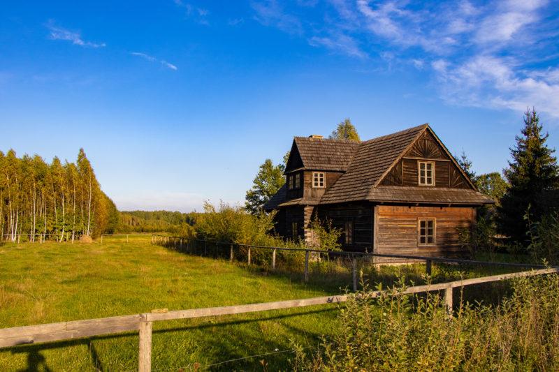 2020-10-04_16-24-39_Urwald Bialowieza_IMG_5864-1600