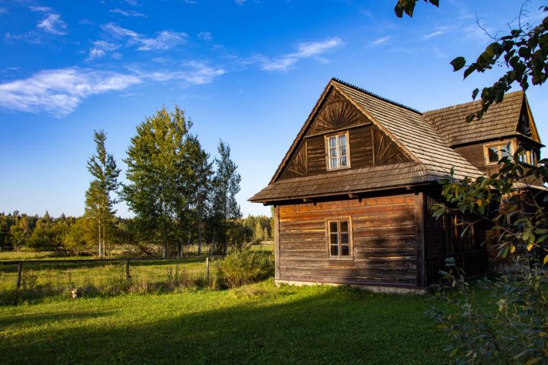 2020-10-04_16-25-51_Urwald Bialowieza_IMG_5871-1600