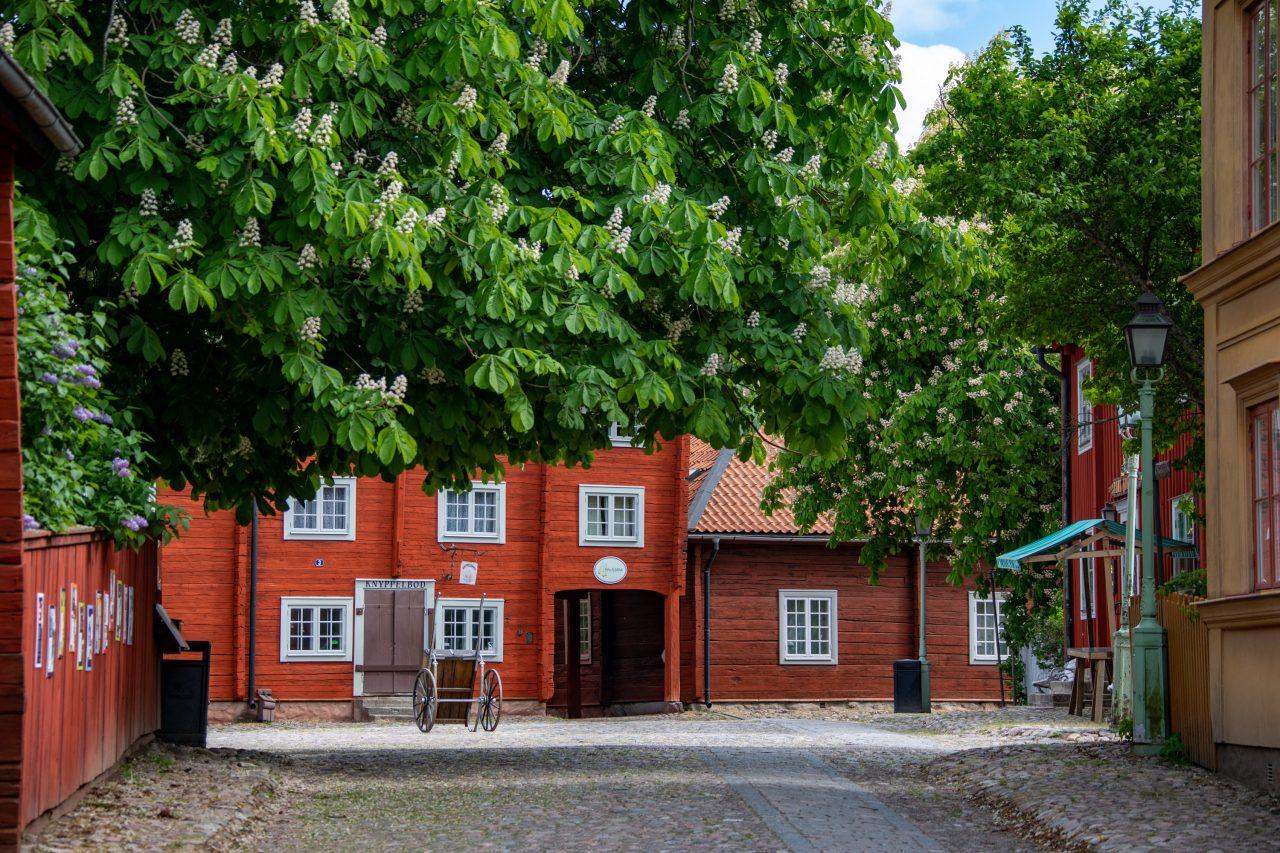 2021-06-01_16-09-31_Schweden Linkoping Gamla_4044-2560