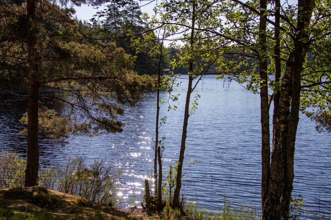 2021-06-02_08-32-13_Schweden See vor Örebro_4137-2560