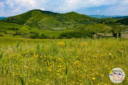 2019-06-08_11-06-17_Rumänien-Schlammvuilkan_IMG_1002-1600.jpg